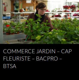 commerce-jardin-fleuriste-bac-pro-bts