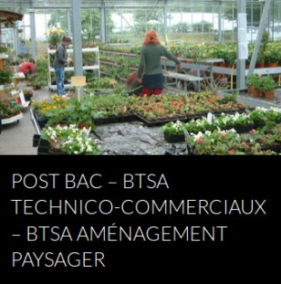 bts-technico-commercial-amenagement-paysager