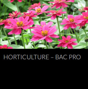 horticulture-bac-pro